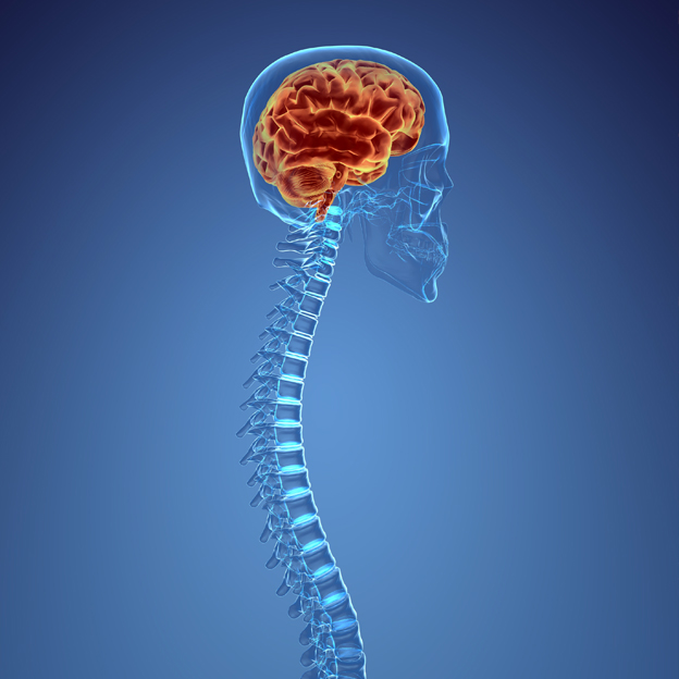 Neurosurgery-Blog-Spine